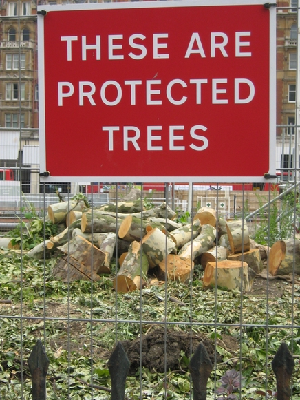 Safety_trees